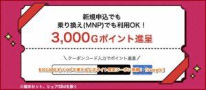 BIGLOBEモバイルで使える公式サイト限定クーポン情報!【sample】